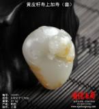 lg502黄皮籽寿上加寿(兽)